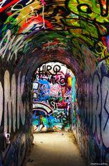 ...down the rabbit hole into Wonderland!