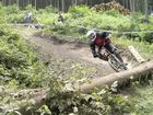Downhill in Ilmenau 1