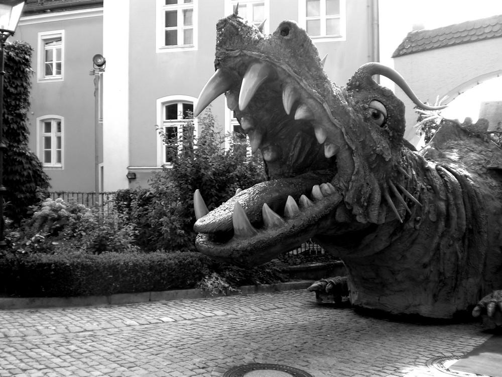 Drachen haben Vorfahrt