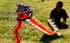 Drachendrachen mit Drachendrachenbändiger