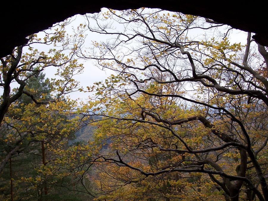 Drachenfelshöhle - Pfalz