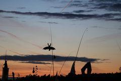 Drachenfest Rothsee der Samstagabend