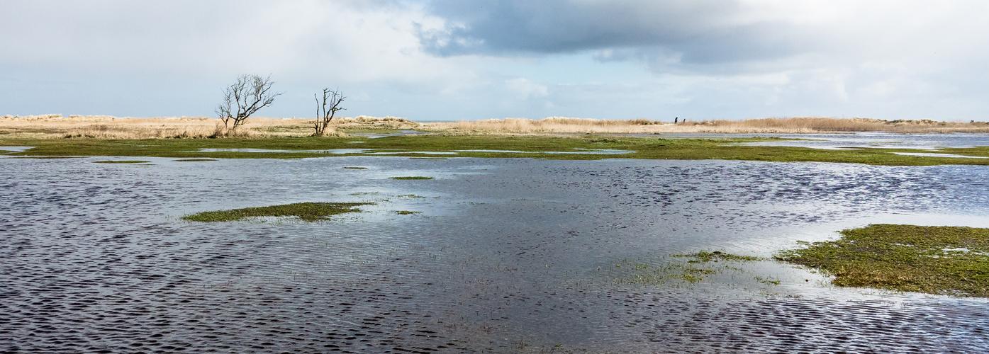 Drachenwiese unter Wasser
