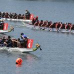 Dragon Boats in Action (2)