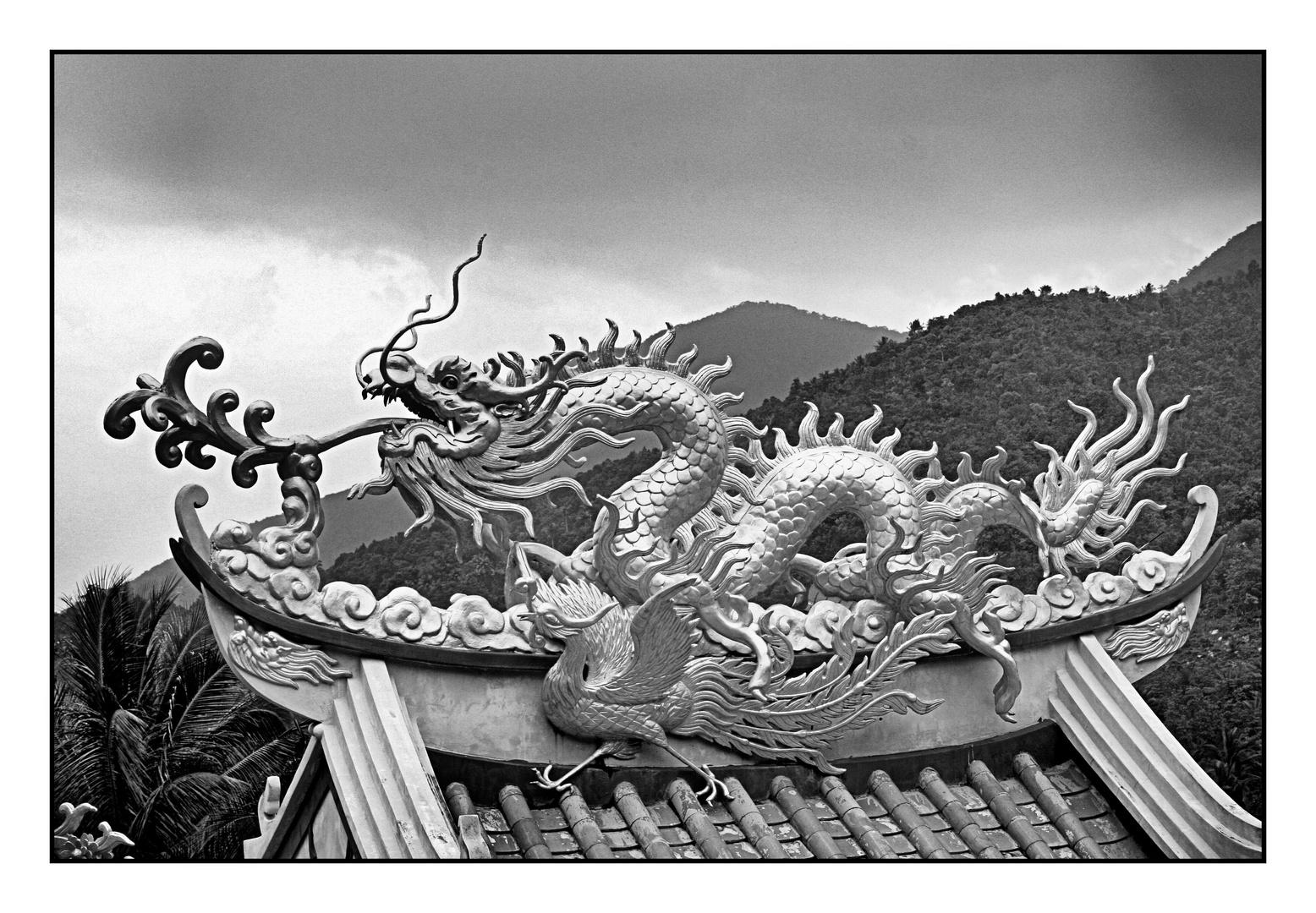 Dragon @ Chinese Temple in Koh Phangan 2