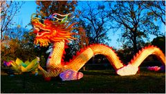 Dragon chinois avec l'accent...