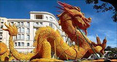 Dragon citronné