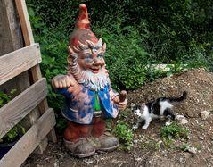 Dragos Gartenzwerg mit Kätzchen!