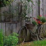 Drahtesel mit Blumen