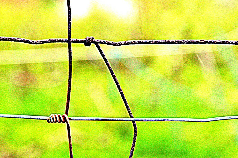 Drahtzaun Foto & Bild | alltagsdesign, alltag, zaun Bilder auf ...