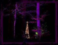 """draußen vom Walde ...............  """""""
