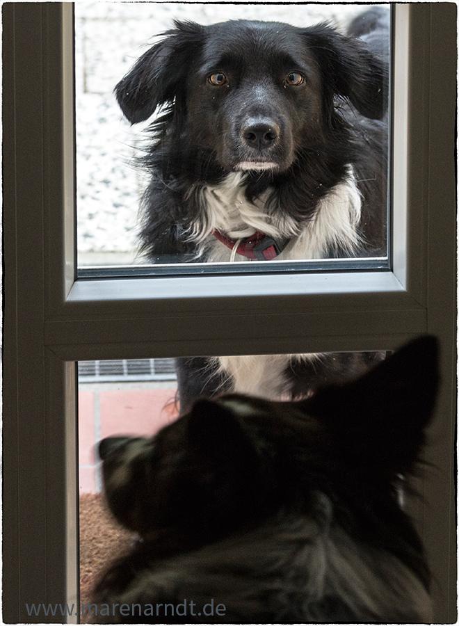 Draußen vor der Tür