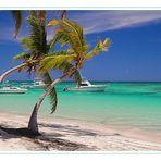 Dream Caribbian Beach