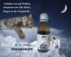 Dreamdrops - DAS Schlafmittel für Sie!