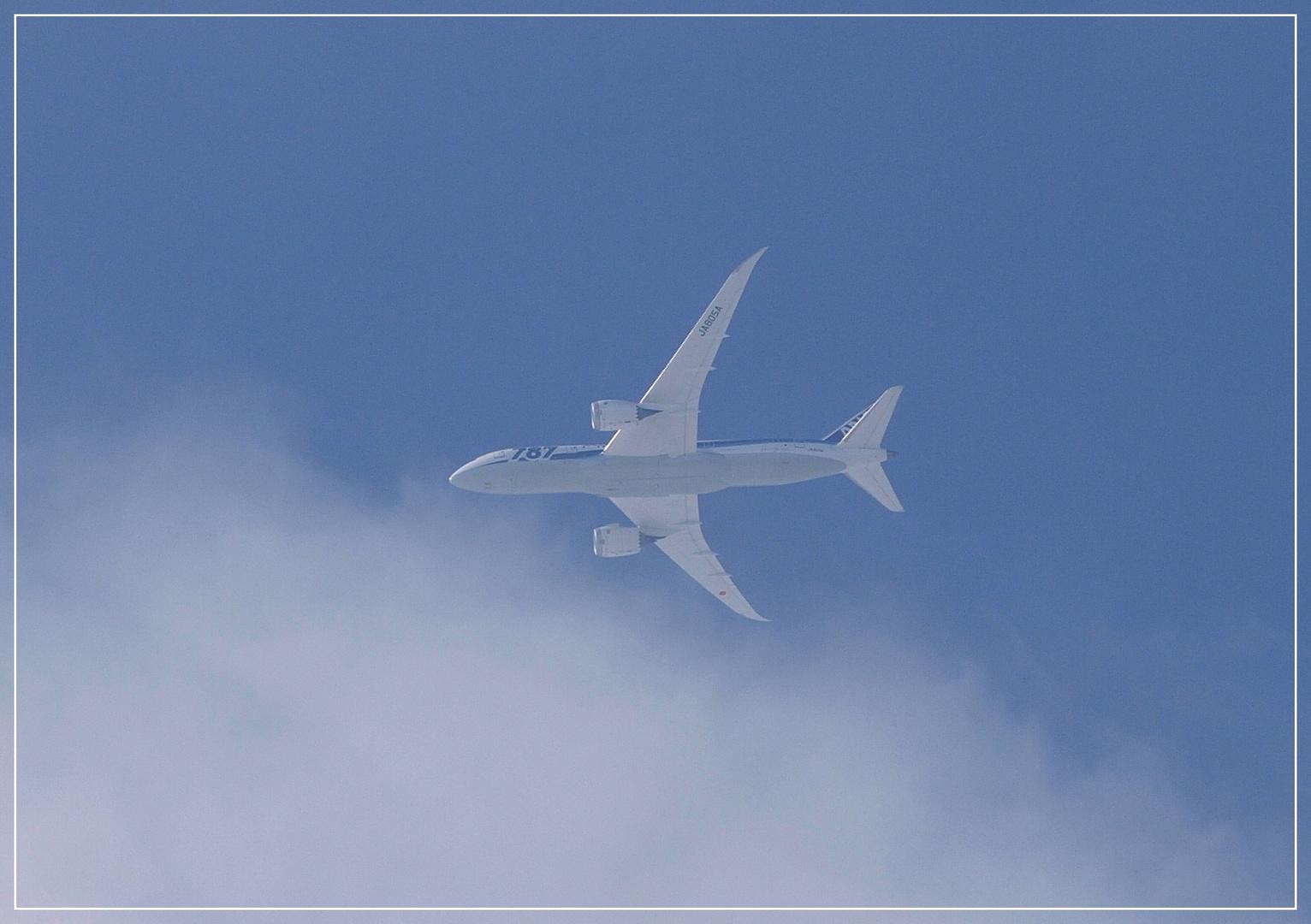 Dreamliner B787-800