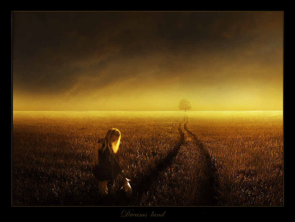 Dreams land
