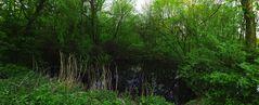 Dreckiges Loch im Frühling