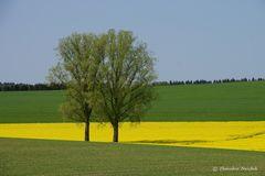 Drei Farben im April