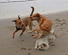 Drei Freunde am Strand