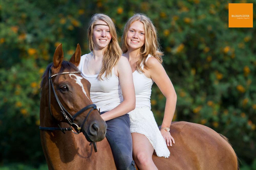 drei hübsche Mädels Foto & Bild | tiere, haustiere, pferde