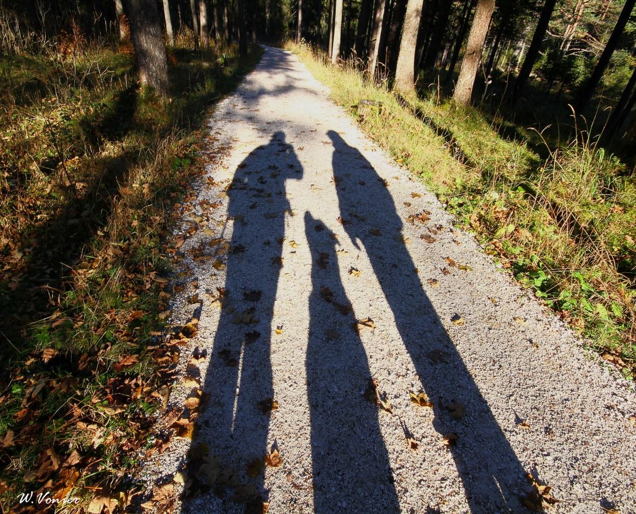Drei im Schatten