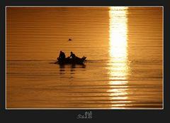 Drei Nilfischer