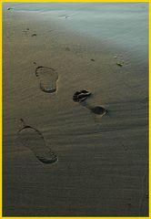 Drei Spuren im Sand