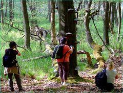 Drei Waldfeen auf der Suche nach dem Fomes fomentarius-Baum**zu deutsch