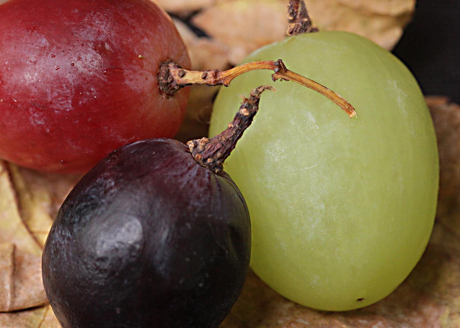 Drei Weintrauben