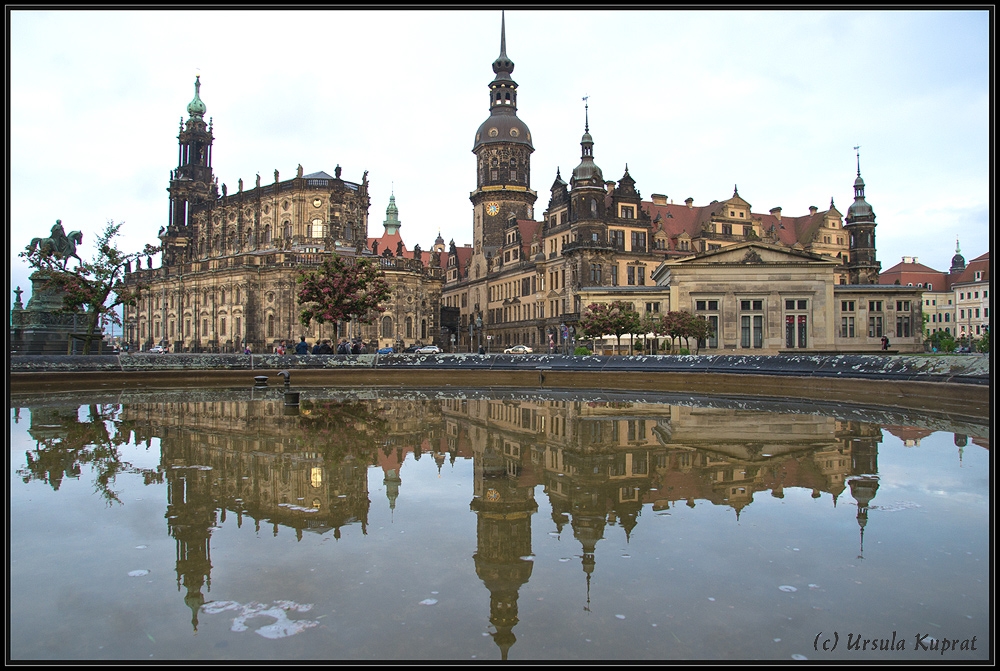 Dresden *5