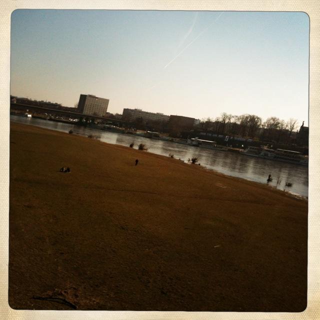 Dresden will Sommer