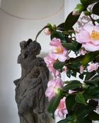 Dresdner Frühling im Palais