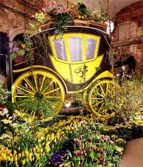 Dresdner Frühling im Palais - Blumen- und Floristikausstellung