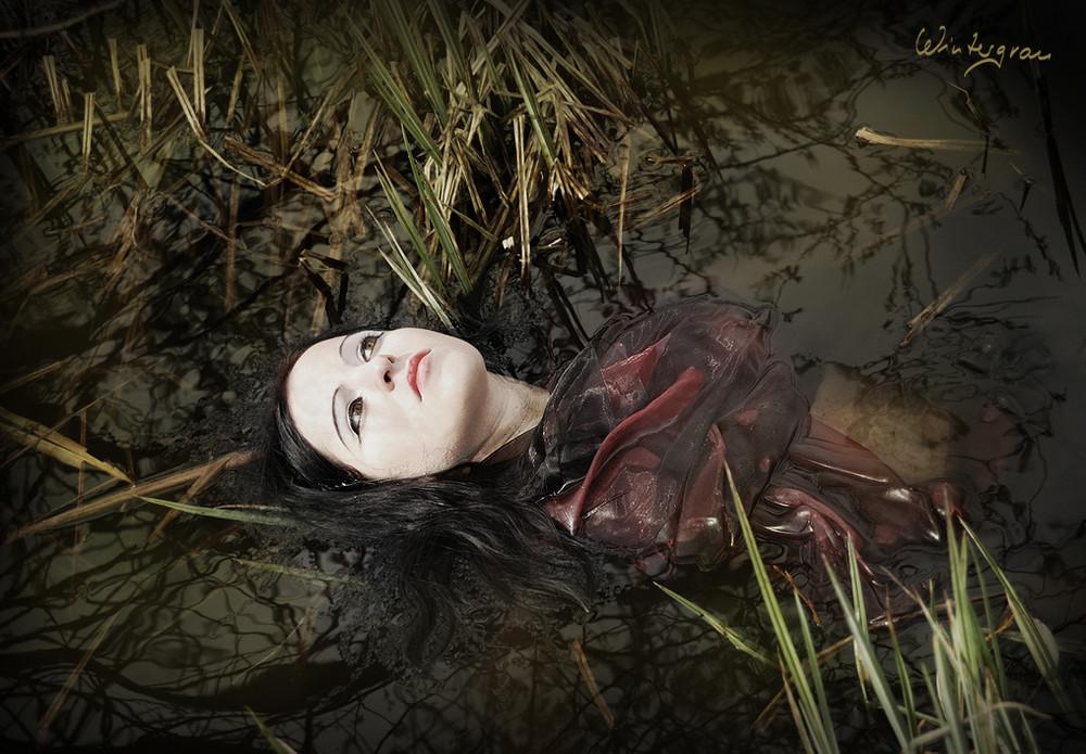 ~Drowning Rose~