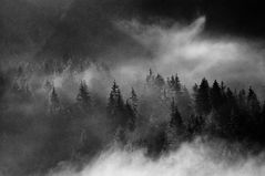 drunten im Nebel