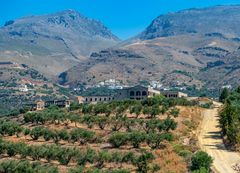 Daimoni Kreta