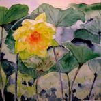 Dschungel - Sonnenblüte
