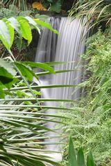 Dschungel-Wasserfall