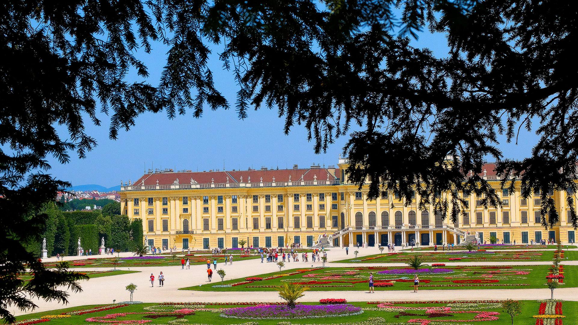Du côté de Schönbrunn...
