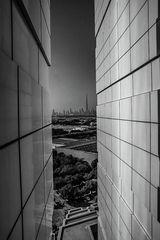 Dubai s/w
