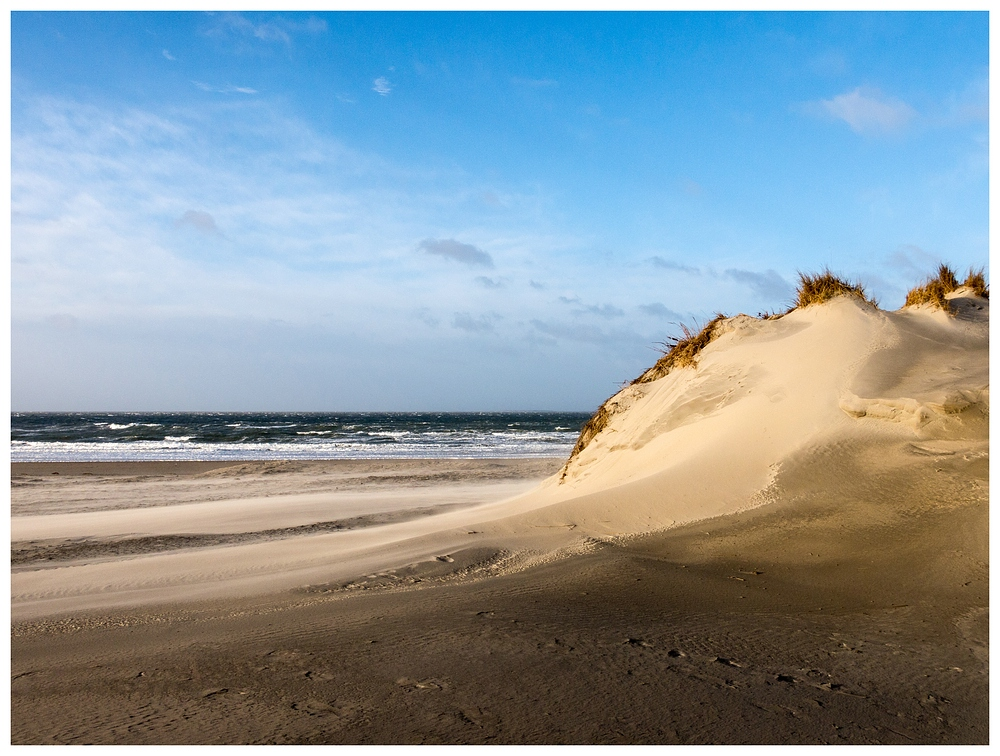 düne strand und meer foto  bild  nordsee bilder auf