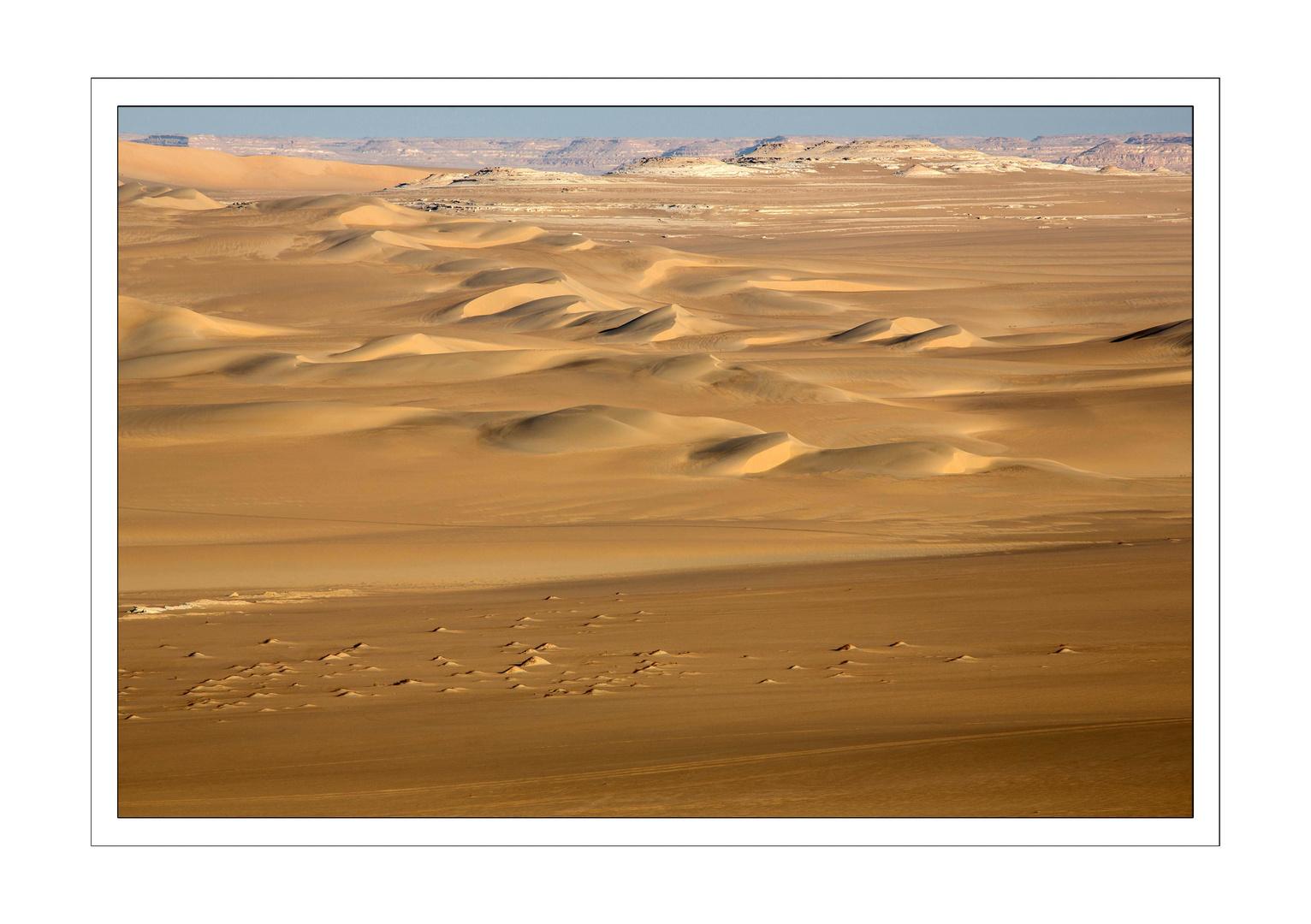 Dünen bei Oase Siwa
