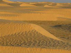 Dünen soweit man sieht