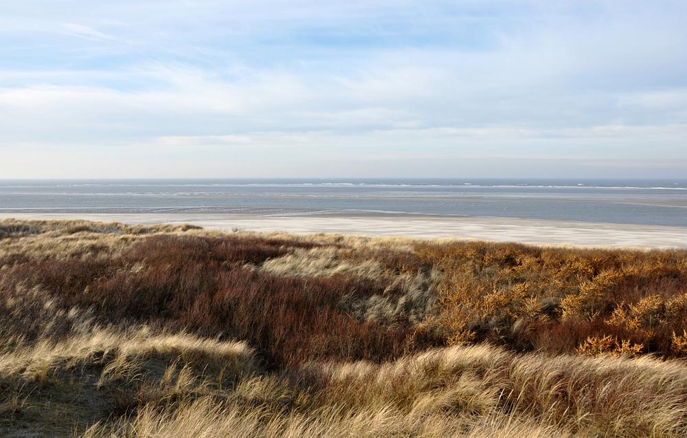 dünen strand und meer foto  bild  nordsee bilder auf