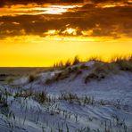 Dünenimpressionen bei Sonnenuntergang