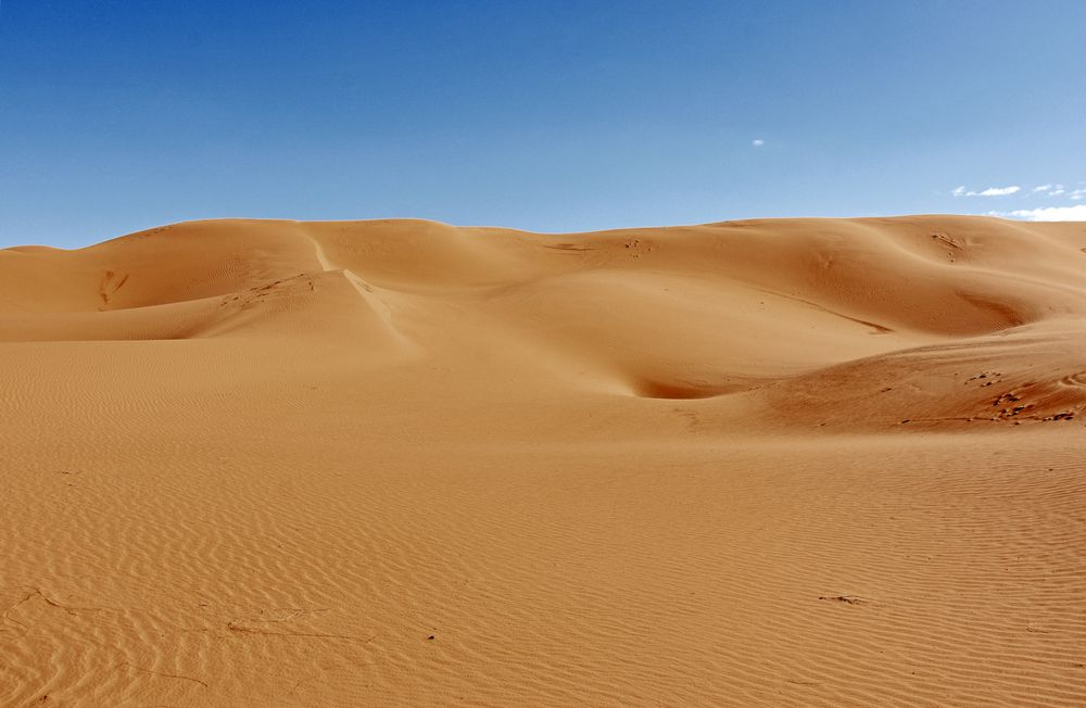 Dünenlandschaft bei Tafraout Hassi Fougani