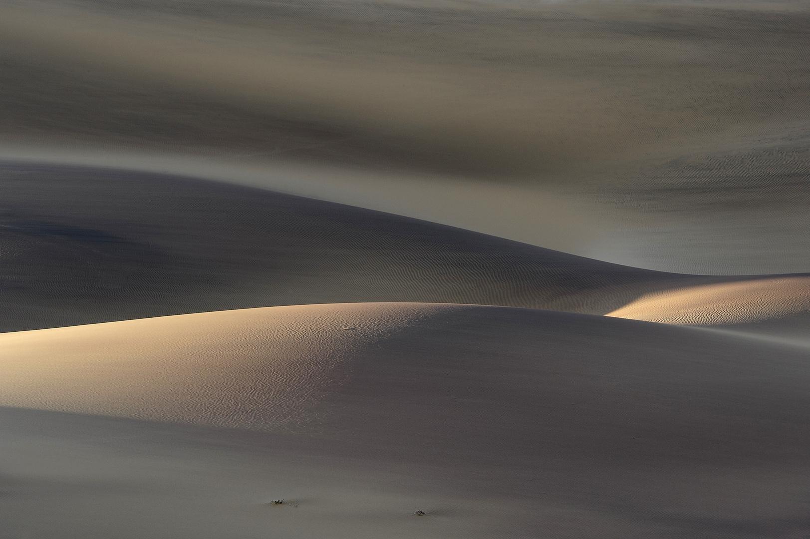 Duenenlicht -Dunelight_DSC8920-01