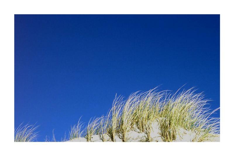 Dünenspitze am dunkelblauen Himmel