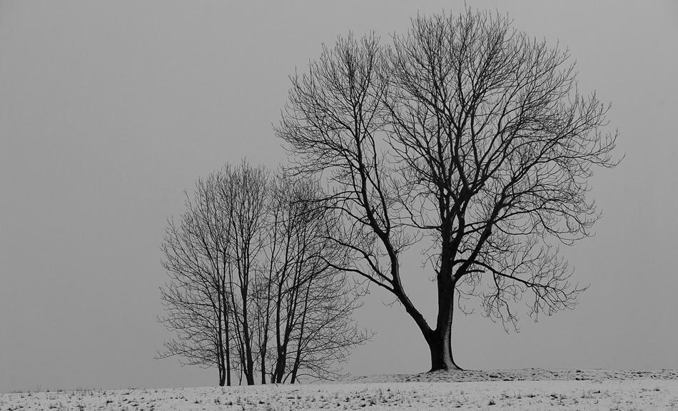 Dünne Schneedecke