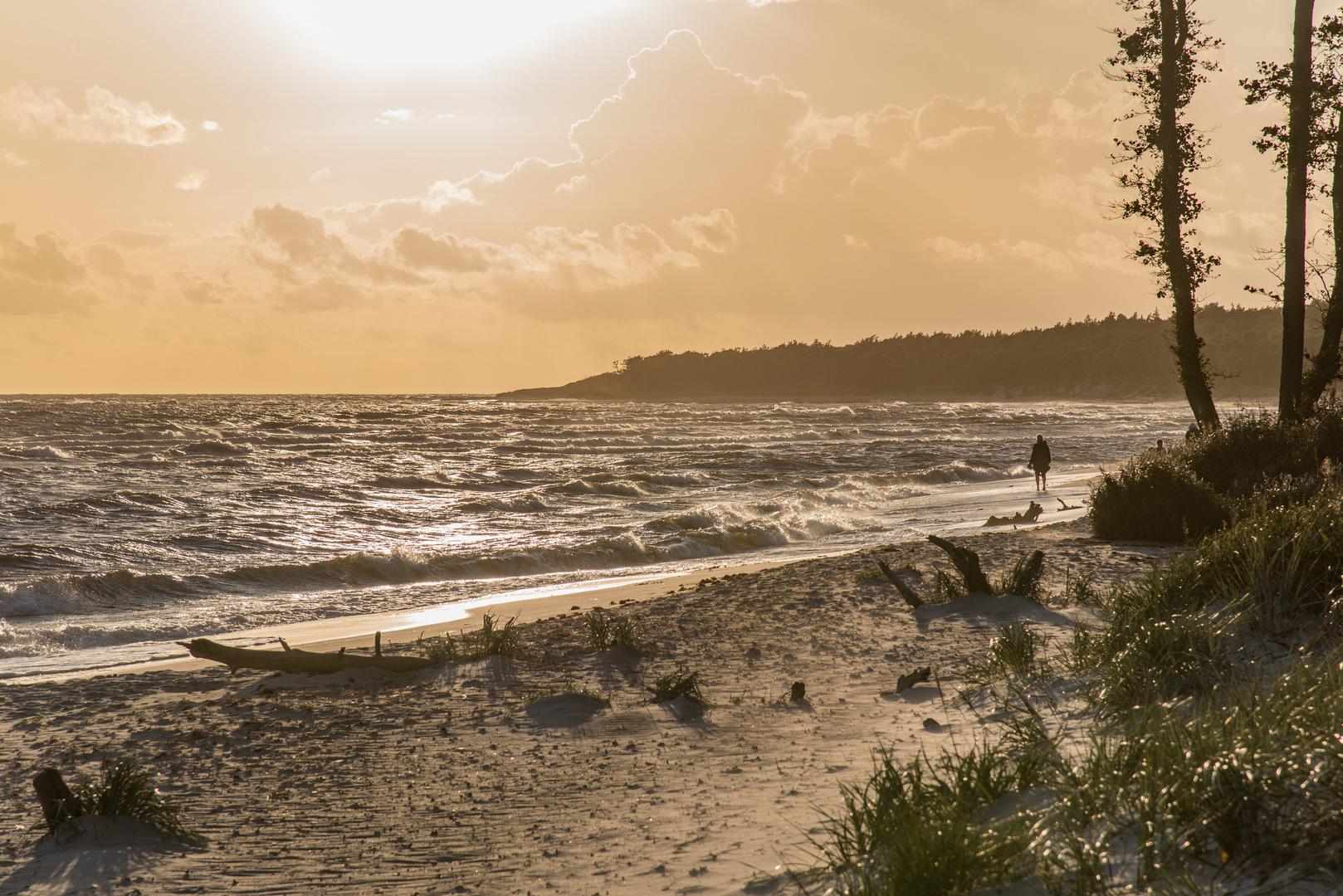 Dueodde Beach